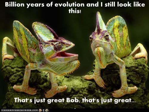 Billion years of evolution and I still look like this!  That's just great Bob, that's just great...                          .