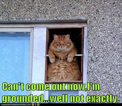 Can't come out now,I'm grounded...well not exactly.