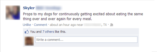 same meal,dogs,excited dog,failbook,g rated