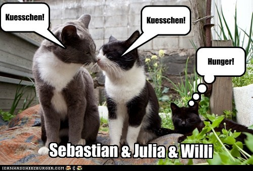 Sebastian & Julia & Willi