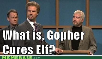 Gopher Cures Elf