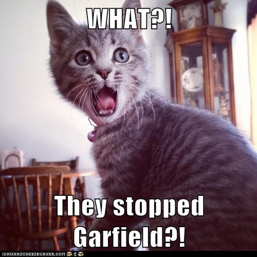 WHAT?!   They stopped Garfield?!