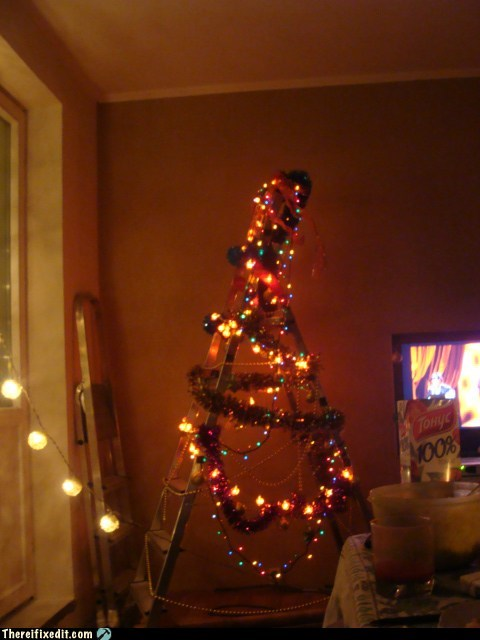 christmas,spruce,christmas tree,stepladder