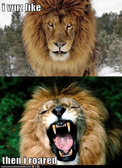 i wuz like  then i roared