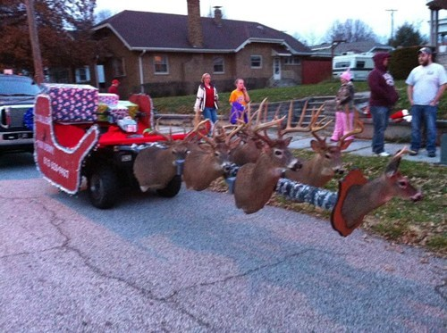 Taxidermy Sleigh FAIL