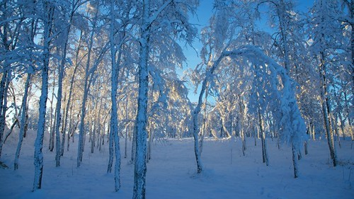 Snowfall in Kiruna, Sweden
