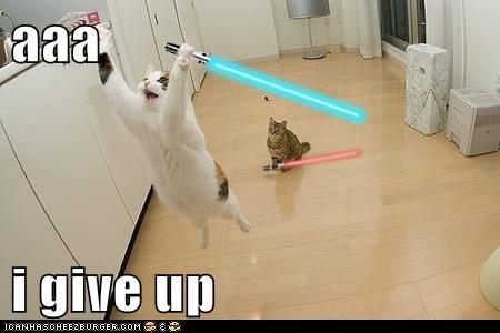 aaa  i give up