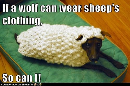 If a wolf can wear sheep's clothing,  So can I!