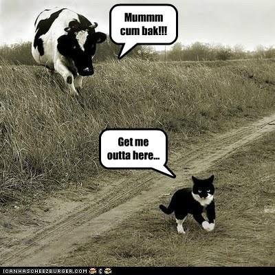 Mummm cum bak!!!