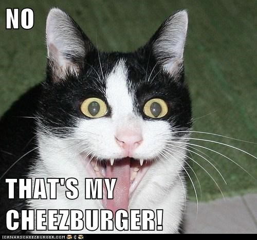 NO  THAT'S MY CHEEZBURGER!