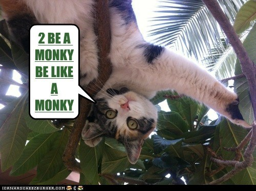 2 BE A MONKY BE LIKE A MONKY