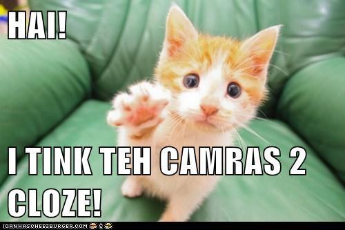 HAI!  I TINK TEH CAMRAS 2 CLOZE!