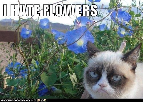 I HATE FLOWERS