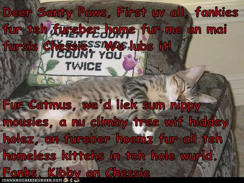 Deer Santy Paws, First uv all, fankies fur teh fureber home fur me an mai fursis Chessie.  We lubs it!  Fur Catmus, we'd liek sum nippy mousies, a nu climby tree wif hiddey holez, an fureber hoemz fur all teh homeless kittehs in teh hole wurld.  Fanks, Ki