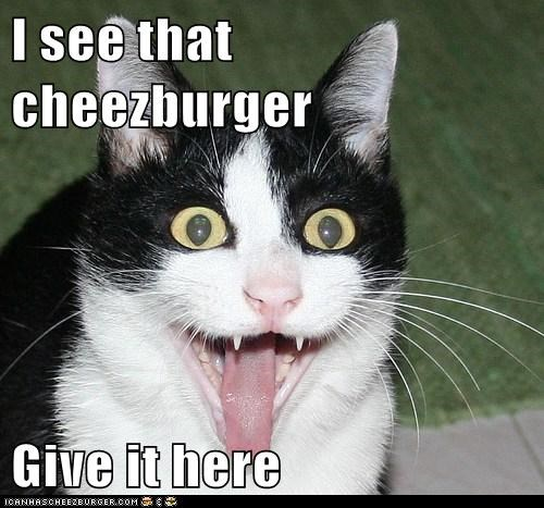 I see that cheezburger  Give it here