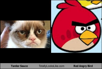 Tarder Sauce Totally Looks Like Red Angry Bird