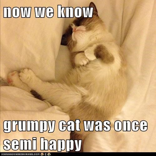 now we know  grumpy cat was once semi happy