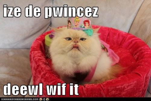 ize de pwincez  deewl wif it