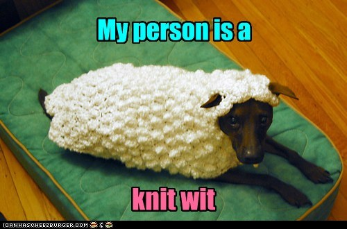 costume,dogs,sweater,sheep,what breed,knit