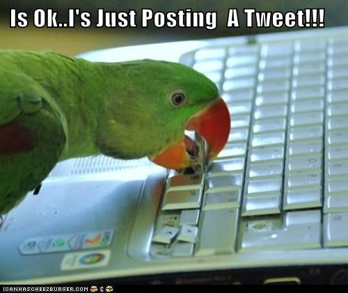 Is Ok..I's Just Posting  A Tweet!!!