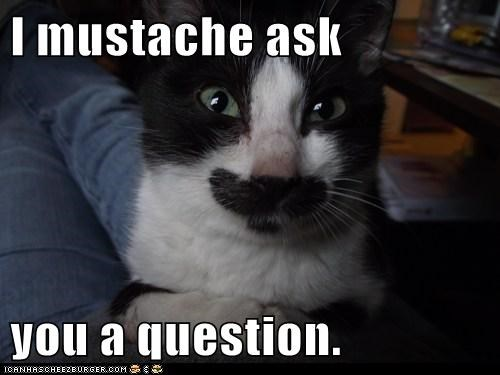 I mustache ask   you a question.