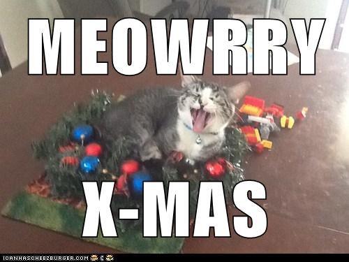 MEOWRRY  X-MAS