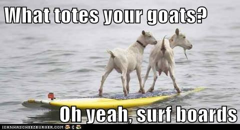 What totes your goats?   Oh yeah, surf boards
