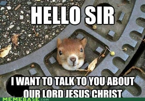 Eternal Salvation Squirrel