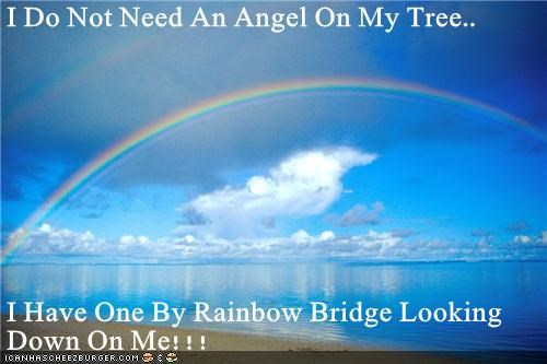 I Do Not Need An Angel On My Tree..  I Have One By Rainbow Bridge Looking Down On Me!!!
