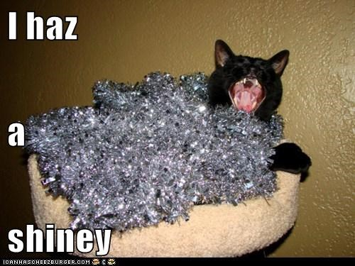 I haz a  shiney