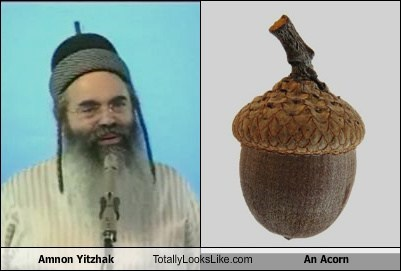 Amnon Yitzhak Totally Looks Like an Acorn