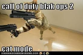 call of duty blak ops 2  cat mode