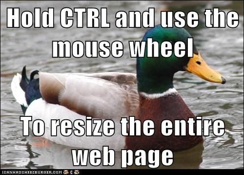 Hold CTRL and use the mouse wheel  To resize the entire web page