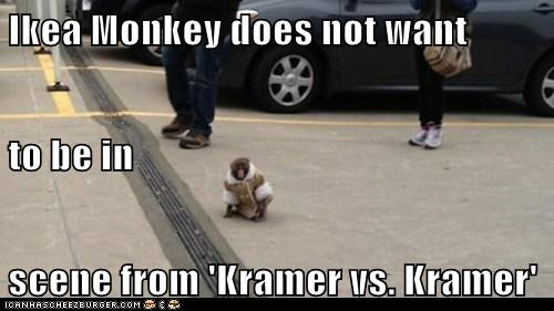 Ikea Monkey does not want to be in scene from 'Kramer vs. Kramer'