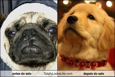 antes do salo Totally Looks Like depois do salo