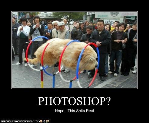 PHOTOSHOP?
