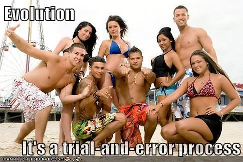 error,jersey shore,evolution,the situation,snooki,pauly d,j woww,mistake