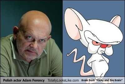 "Polish Actor Adam Ferency Totally Looks Like Brain from ""Pinky and the Brain"""
