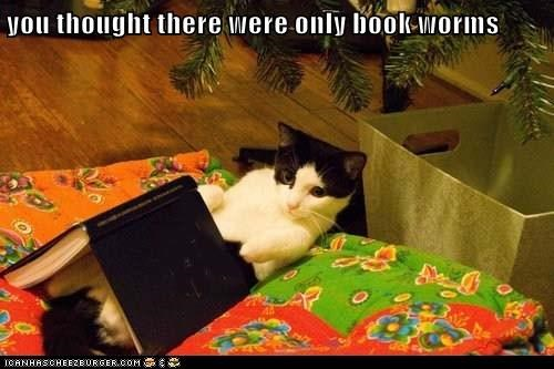you thought there were only book worms
