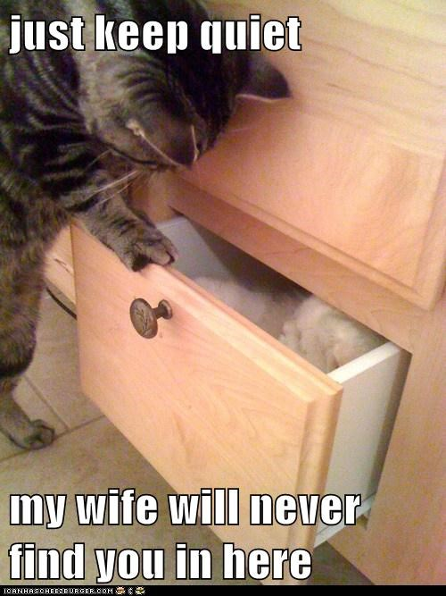 just keep quiet  my wife will never find you in here