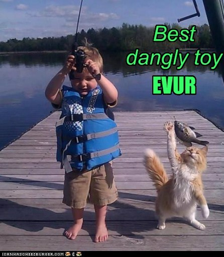 Best dangly toy *EVUR*