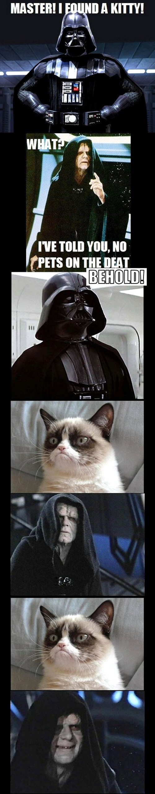 star wars,Memes,the dark side,Grumpy Cat,tard,multipanel,darth vader