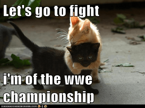 Let's go to fight  i'm of the wwe championship
