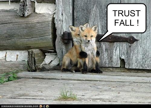 TRUST FALL !