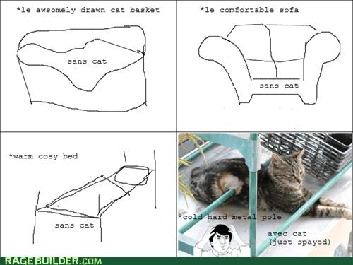 comfort 101