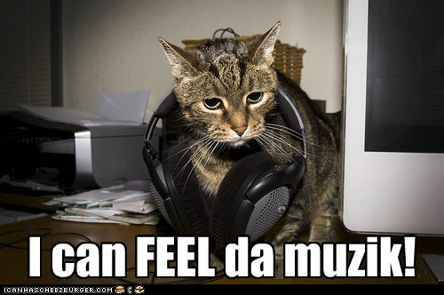 Music,captions,feel,sound,headphones,Cats