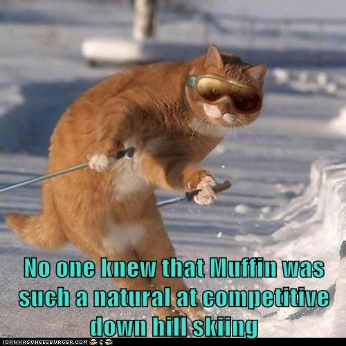 No one knew that Muffin was such a natural at competitive down hill skiing