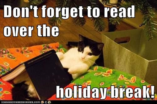 Don't forget to read over the  holiday break!