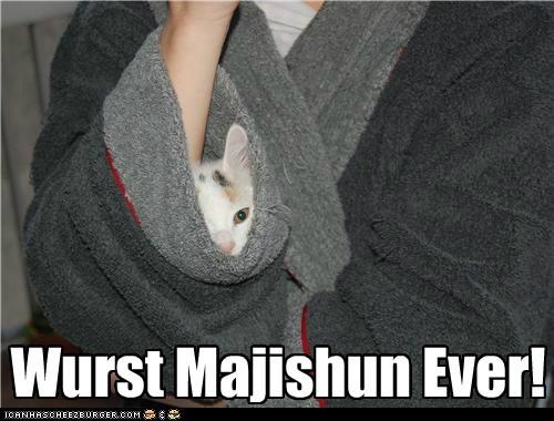 robe,sleeve,captions,magician,Cats,magic