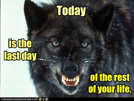 wolves,life,Staring,last day,evil,insanity,today